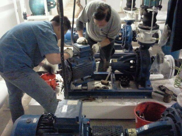 翠屋泳池保養公司提供泳池工程 機房操作 救生員及污水機房操作保養服務 各項操作員訓練課程 Homeyet